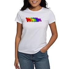Rainbow Welsh Springer Tee