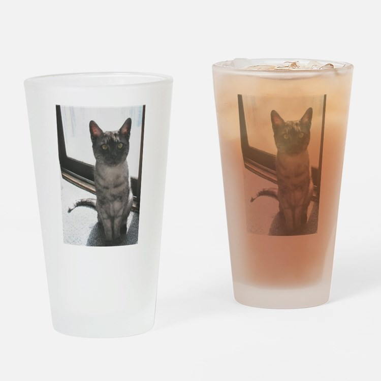 egyptian mau sitting Drinking Glass