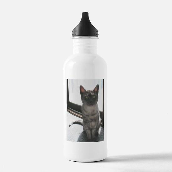 egyptian mau sitting Water Bottle