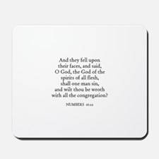 NUMBERS  16:22 Mousepad