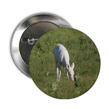 "Rare White Deer 2.25"" Button"