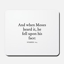 NUMBERS  16:4 Mousepad