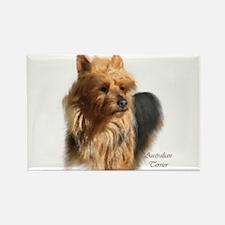 Australian Terrier Art Rectangle Magnet (10 pack)