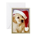 Golden Retriever Christmas Cards (Pk of 10)