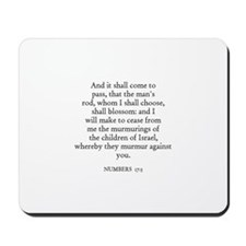 NUMBERS  17:5 Mousepad