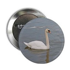 "Pure White Swan 2.25"" Button"