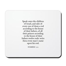 NUMBERS  17:2 Mousepad