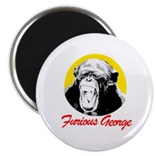 FURIOUS GEORGE Magnet
