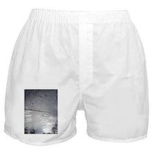 AS ABOVE SO BELOW #18 Boxer Shorts