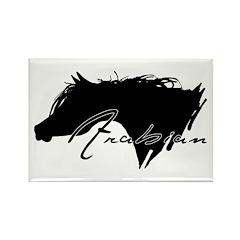 Arabian Horse Rectangle Magnet (10 pack)
