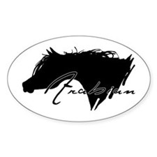 Arabian Horse Oval Decal