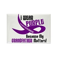 I Wear Purple (Grandfather) 33 PC Rectangle Magnet
