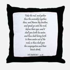 NUMBERS  20:8 Throw Pillow