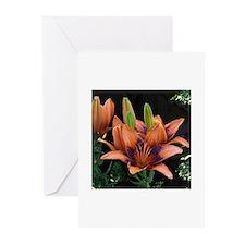 Purple orange day lily flower Greeting Cards (Pk o