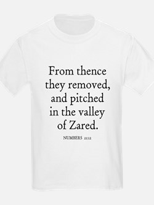 NUMBERS  21:12 Kids T-Shirt