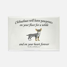 Chihuahua Pawprints Rectangle Magnet