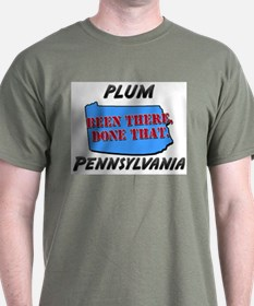 plum pennsylvania - been there, done that T-Shirt