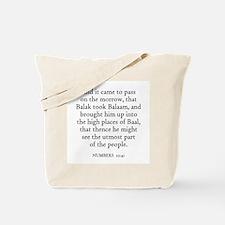 NUMBERS  22:41 Tote Bag