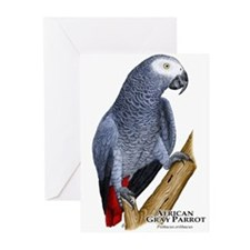 African Gray Parrot Greeting Cards (Pk of 10)