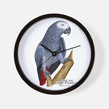African Gray Parrot Wall Clock