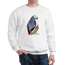 African Gray Parrot Sweatshirt
