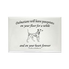 Dalmatian Pawprints Rectangle Magnet