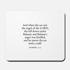 NUMBERS  22:27 Mousepad