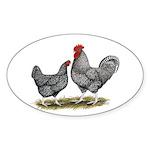 Cuckoo Marans Oval Sticker (50 pk)