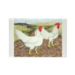 Chickens On The Farm Rectangle Magnet
