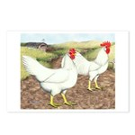 Chickens On The Farm Postcards (Package of 8)