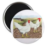 Chickens On The Farm Magnet