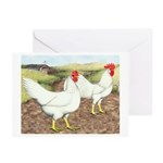 Chickens On The Farm Greeting Cards (Pk of 20)