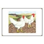 Chickens On The Farm Banner