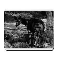 Okapi (black & white) Mousepad