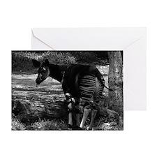 Okapi (black & white) Greeting Card