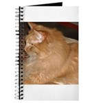 Orange Tabby Cat Journal