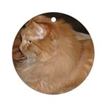 Orange Tabby Cat Ornament (Round)