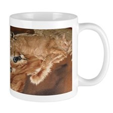 Orange Tabby Hiding Mug