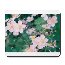 diane young photography Mousepad
