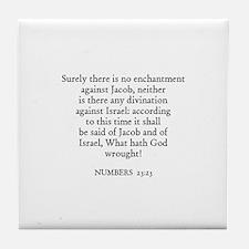 NUMBERS  23:23 Tile Coaster