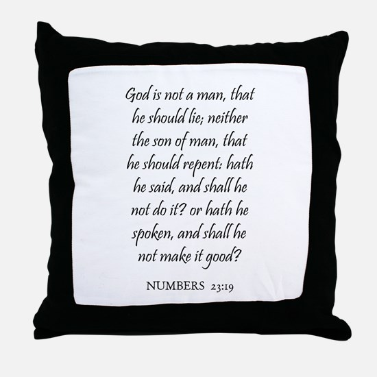NUMBERS  23:19 Throw Pillow