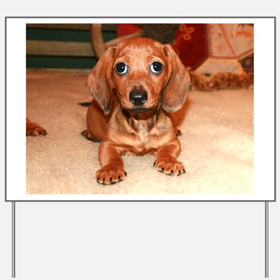 Red Doxie Puppy Yard Sign
