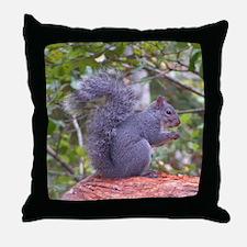 Gray Squuirrel Throw Pillow