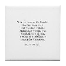 NUMBERS  25:14 Tile Coaster