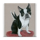 Boston terrier angel Drink Coasters