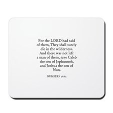 NUMBERS  26:65 Mousepad