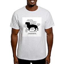 Dachshund Chart T-Shirt