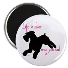 """schnauzer, standard or giant 2.25"""" Magnet (10 pack"""