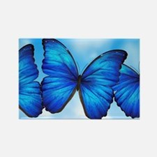 Blue Butterfly Rectangle Magnet