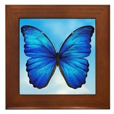 Blue Butterfly Framed Tile